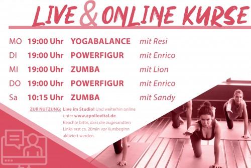 Deine LIVE & Online Kurse