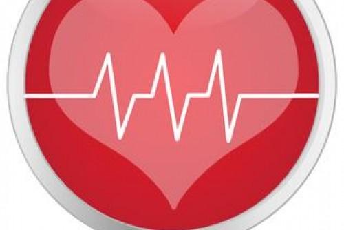 Herz-Kreislauftraining